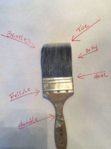 Parts of a brush. handle, ferrule, heel, belly, toe.